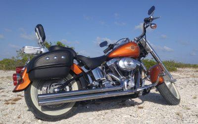Foxy – Harley Davidson FatBoy