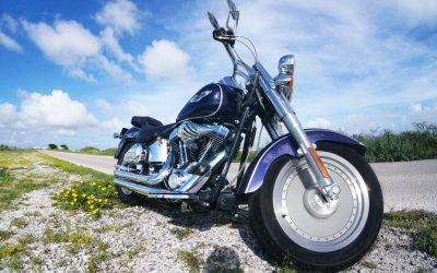 Mr. Steel – Harley Davidson FatBoy (FI)